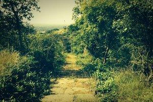 Walking along the hills