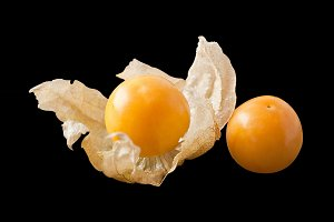 Cape gooseberry isolated on black