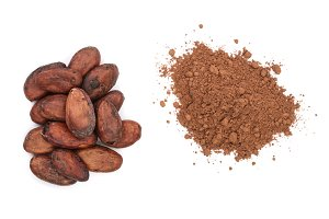 cocoa bean and cocoa powder isolated on white background top view