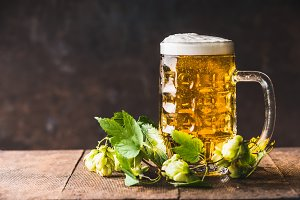 Mug of beer and hops, rustic style