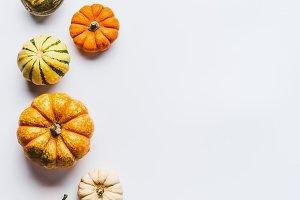 Various colorful little pumpkin