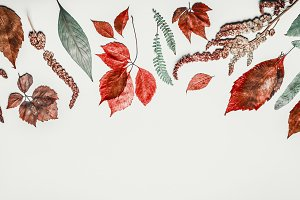 Autumn leaves flat lay border