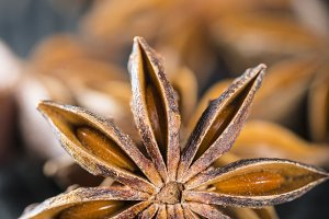 Closeup from star anise seeds