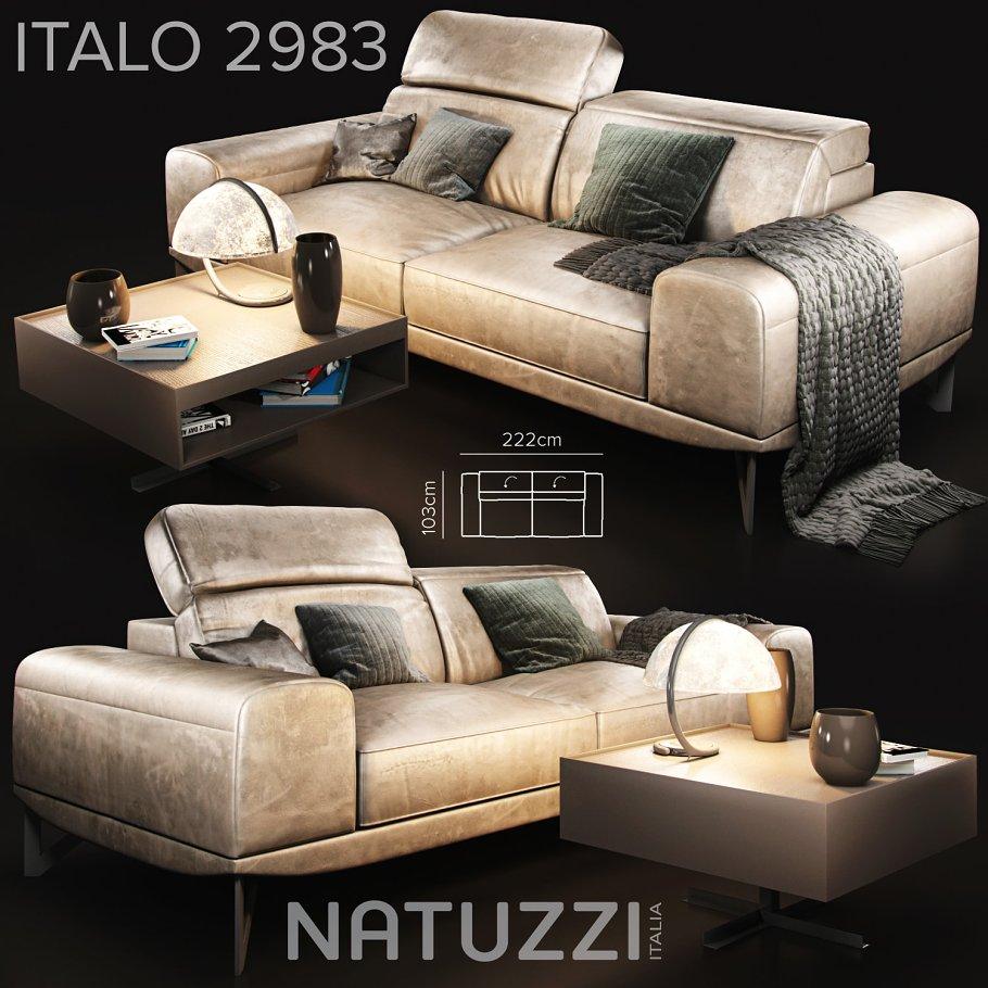Natuzzi Sofa Elegant Home Design