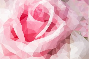 pastel rose flowers polygon