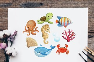 Sea Creatures Watercolor Clipart