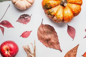 Creative autumn layout with pumpkins