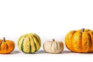 Various pumpkins on white
