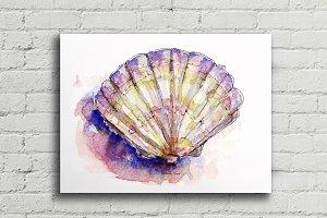 Sea Shell Watercolor Poster