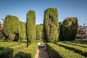 Sabatini Gardens and Royal Palace of Madrid