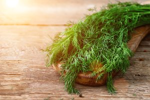 Bunch of fresh organic dill on wooden background with copyspace, rustic and vintage style, selective focus