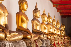 Buddha in a long line.