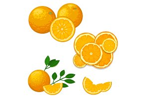 Oranges and orange products illustration natural citrus fruit vector juicy tropical dessert beauty organic juice healthy food.