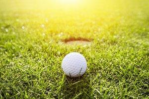 Golf ball on a grass. Sunshine
