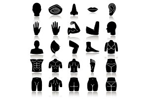 Body parts drop shadow black glyph icons set