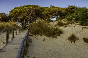 Italian Coast - Porto Cesareo Beach