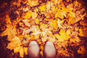 Boots on autumn leaves , top view