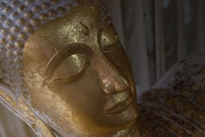 head of gold buddha