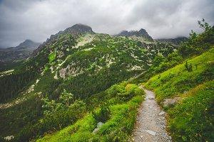 Mountain trail in High Tatra. Nature landscape