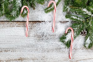 Candy Canes and Snowy Fir Branches