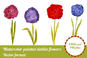 Watercolor Vector Dahlia flowers