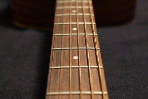 Guitar Fretboard 003