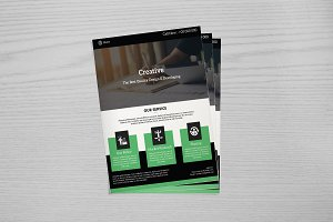 Web Designer Flyer Template -V657