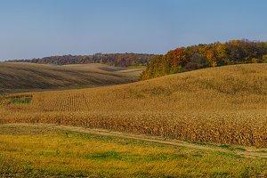 High resolution rural landscape