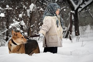 Little girl and dog in snow drifts in the woods