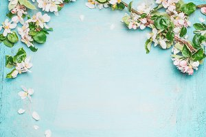Spring blossom on blue background