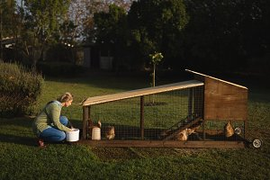 Young woman crouching by chicken coop on grassy field