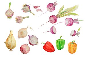 Watercolor Vegetable Collection 3