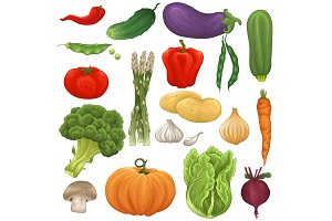 Vegetable set, patterns, backgrounds