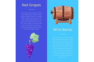 Red Grapes and Wine Barrel Vector Illustration