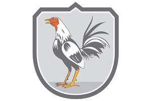 Cockerel Rooster Standing Shield Ret