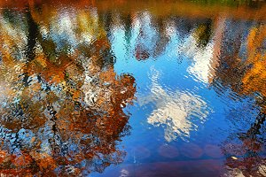 Park in autumn with reflection in water