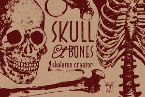 Skeleton Creator - Front & Profile