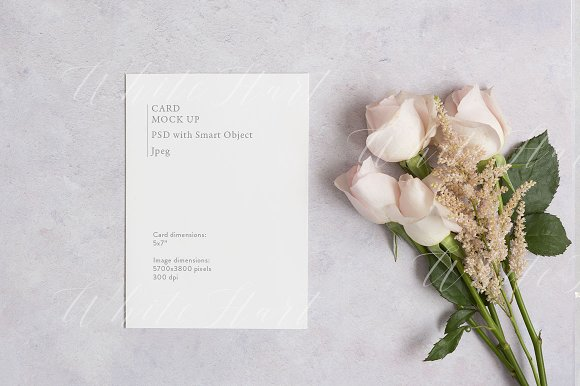 Free 5x7 floral card mock up with roses