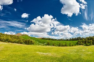 landscape with deep blue sky with white clouds, forest and meadow with lush green grass