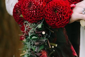Bouquet with bordeaux dahlias on bride hand. Wedding decoration.