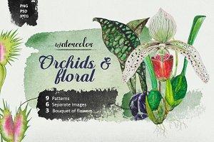 Orchids & Floral