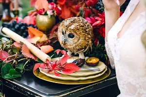 Owl on the festive wedding table with red autumn leaves. Wedding decoration. Artwork