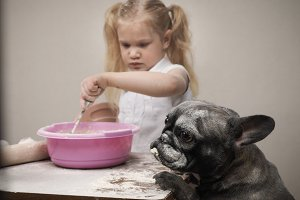 Funny dog and child - cooks. All covered with flour. Fun and interesting