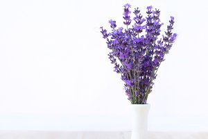 Lavender Bouquet at Provence