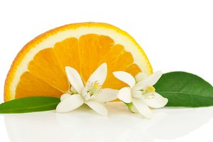 Orange, flower and slice.