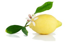 Lemon with leaves and flower.