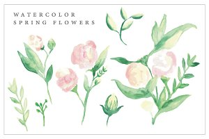Watercolor Spring Blush Flowers