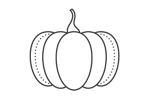 pumpkin vector line icon, sign, illustration on background, editable strokes