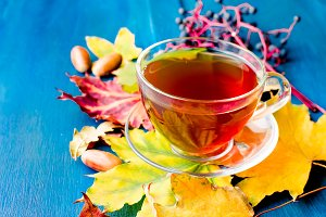 Cup hot tea in autumn day