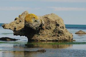 Stone mammoth, Tikhaya bay, Sakhalin